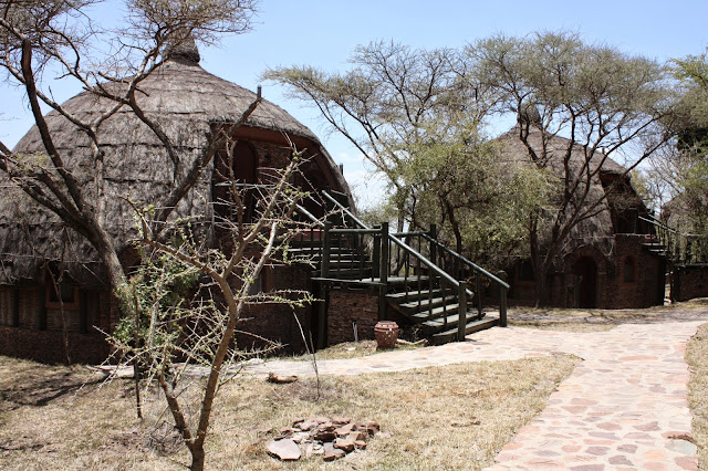 tansania safari afrikka matka
