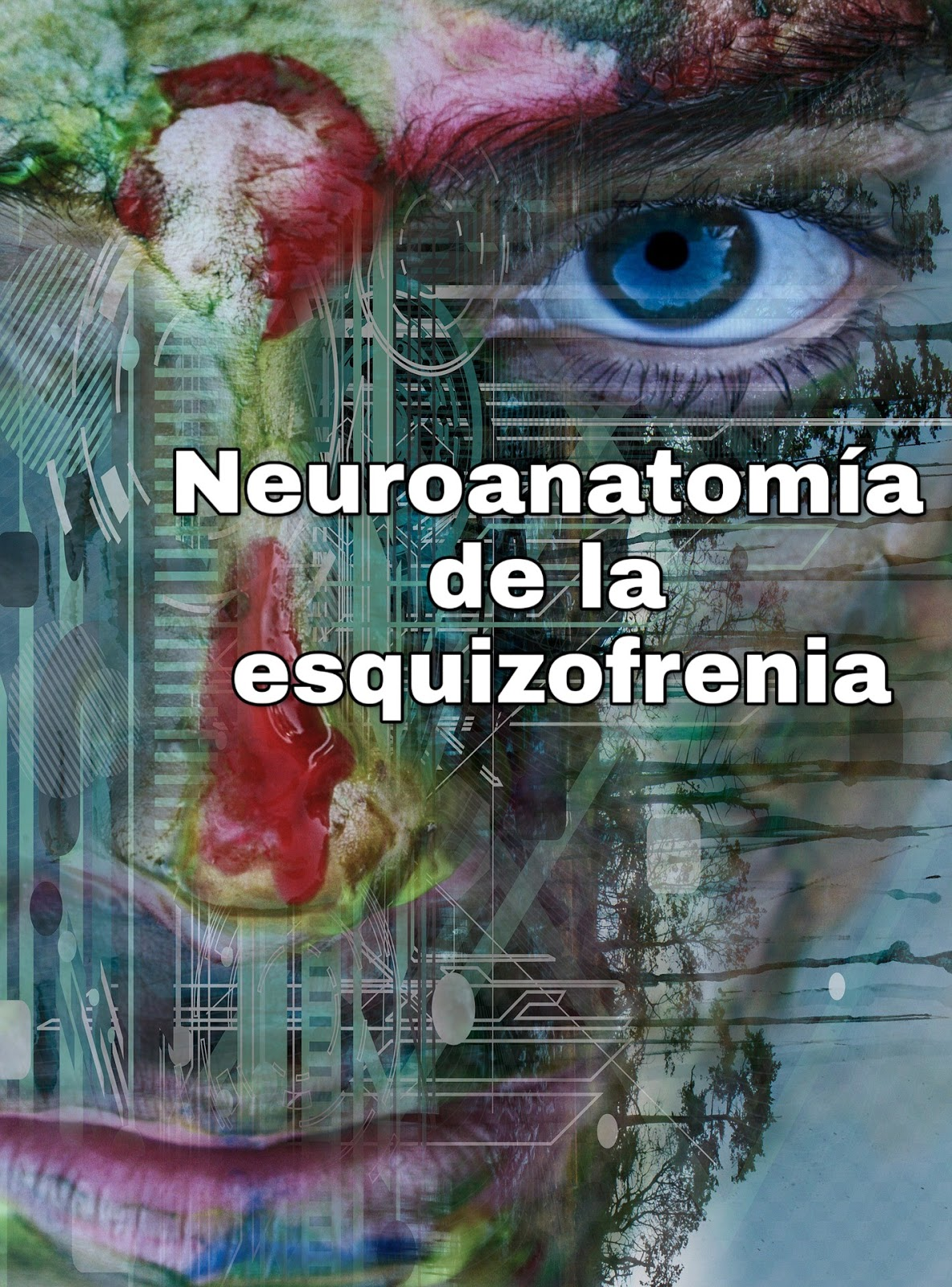 Libro: Neuropsicología de la esquizofrenia.