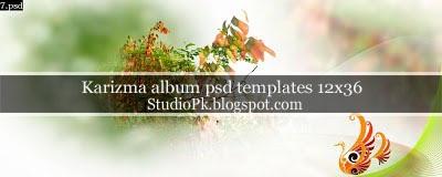 Karizma Album Psd Templates 12x36