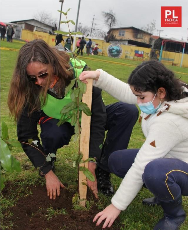 El Árbol: Nuestro compromiso