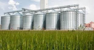 Tarımsal Ürünler Muhafaza ve Depolama Teknolojisi maaşları