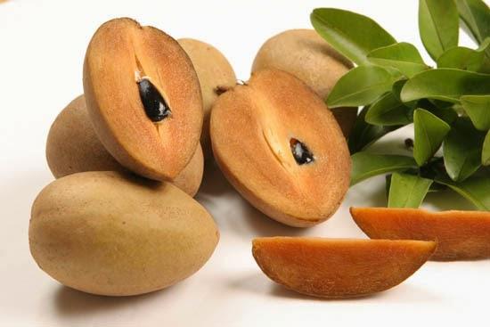 Buah yang satu ini tergolong cukup gampang baik di temukan ataupun untuk di kenali manfaat buah sawo untuk kesehatan