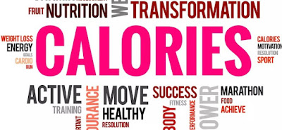 calories to burn in a day 2019