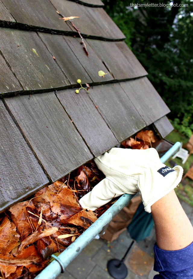 cleaning gutters with water resistant gloves