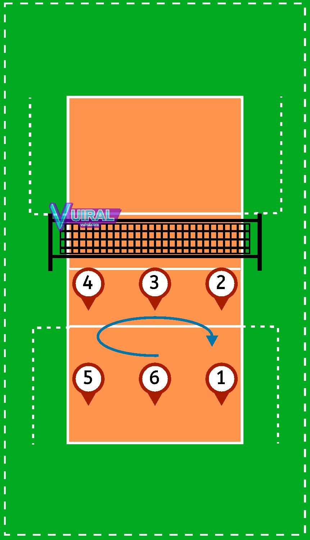 Pemain Bola Voli Dan Tugasnya : pemain, tugasnya, Gambar, Posisi, Pemain, Tugasnya, Lengkap, Vuiral