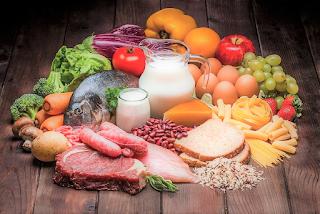 L'alimentazione e le sue funzioni