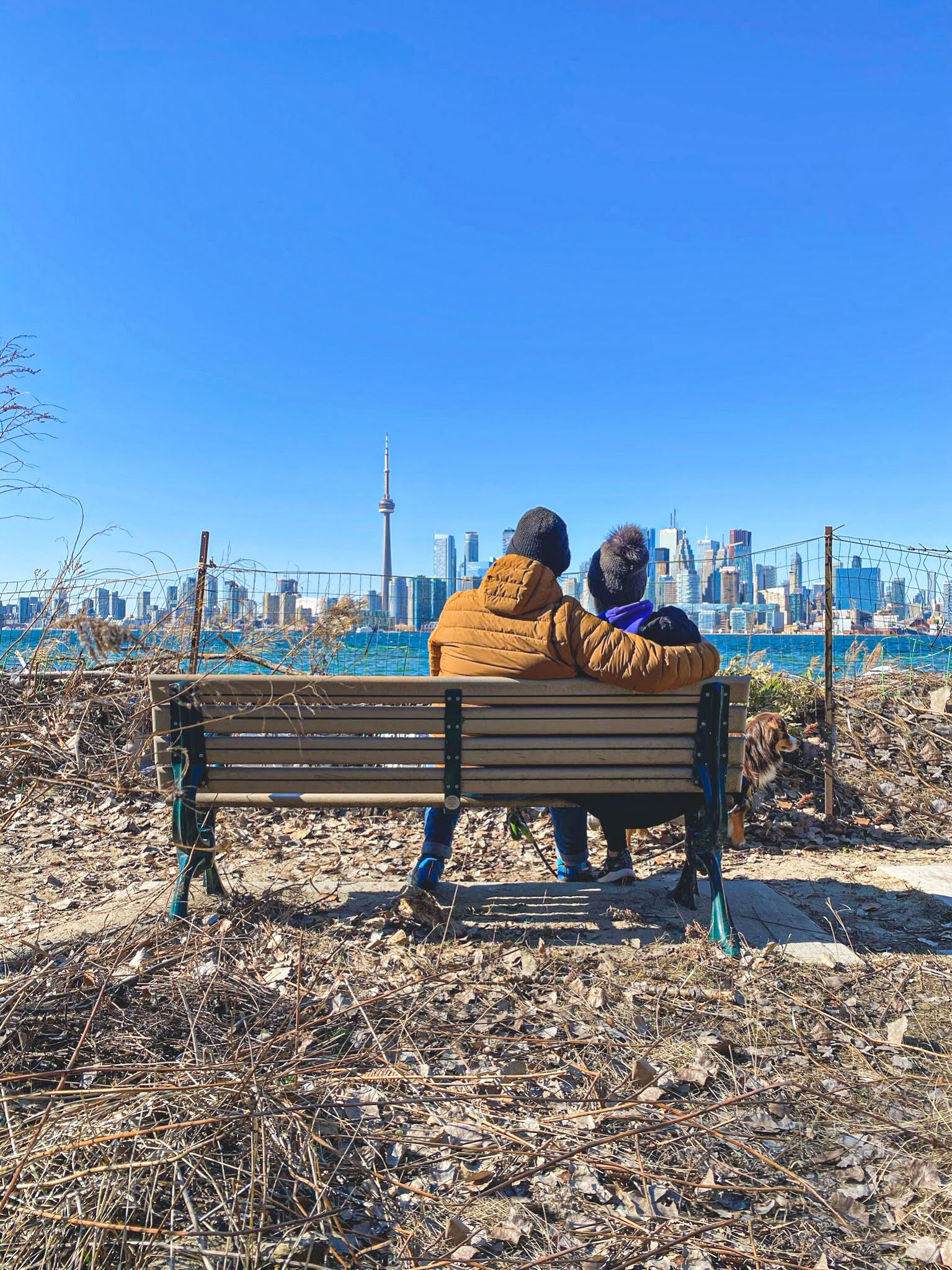 What You Need to Know About Visiting the Toronto Islands During the Pandemic