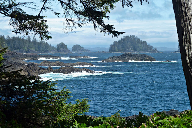 The view from Ucluelet's Wild Pacific Trail...
