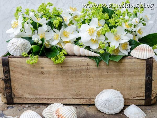 Sommerliche Dekorationsidee für eine alte Ziegelform mit Muscheln und Blüten