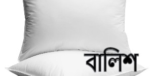 Lose head Bengali riddle answer