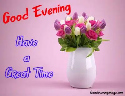 Good Evening Rose Pic
