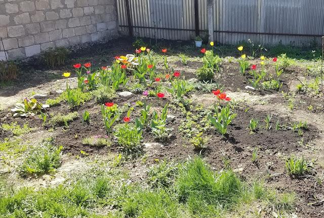 мгновения весны...