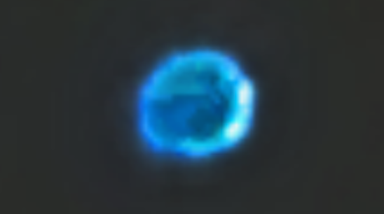 UFO News ~ UFO Caught On NASA All-Sky Camera and MORE Las%2BVegas%252C%2BNe%252C%2BCube%252C%2BBorg%252C%2BStar%2BTrek%252C%2BUSAF%252C%2Bcongress%252C%2Bentrance%252C%2Btop%2Bsecret%252C%2BGod%252C%2BNellis%2BAFB%252C%2BMoon%252C%2Bsun%252C%2BTall%2BWhites%252C%2BDARPA%252C%2Bfight%252C%2Btime%252C%2Btravel%252C%2Btraveler%252C%2BCeres%252C%2BUFO%252C%2BUFOs%252C%2Bsighting%252C%2Bsightings%252C%2Balien%252C%2Baliens%252C%2BFox%252C%2BNews%252C%2BCBS%252C%2BNBC%252C%2BABC%252C%2BColima71