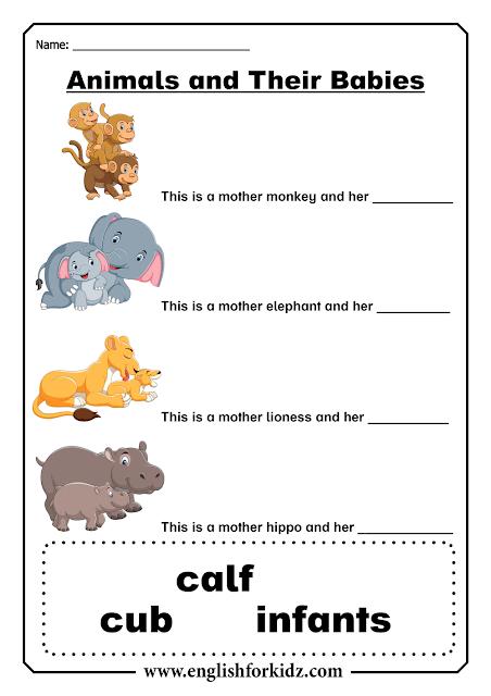English ESL baby animals worksheet