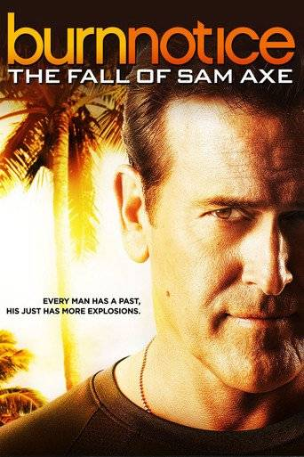 Burn Notice: The Fall of Sam Axe (2011) ταινιες online seires oipeirates greek subs