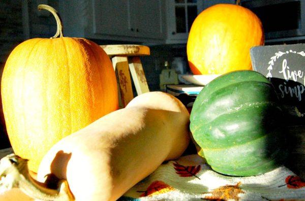 pumkin, acorn, butternut
