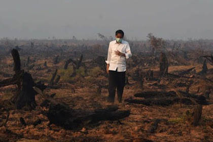 Papua Is Turbulent, Mr. Jokowi, Haven't You Heard It?