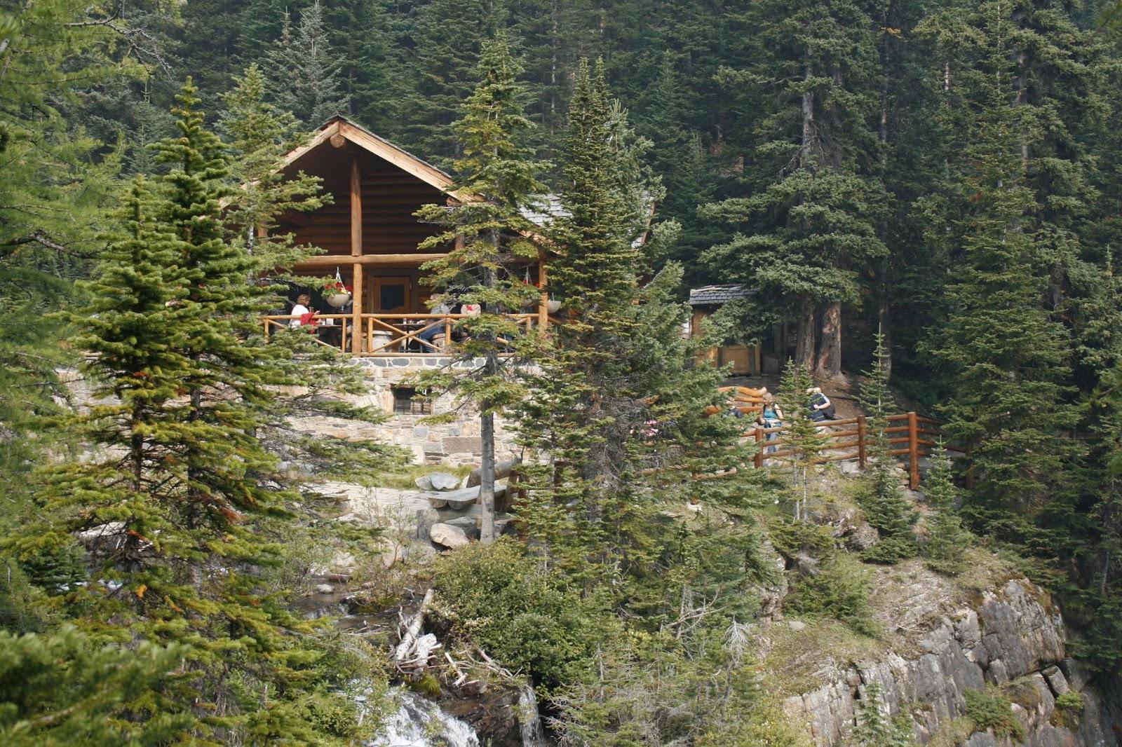 lake agnes tea house open - HD1600×1066