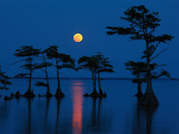 The Moon seen over Lake Mattamuskeet