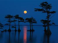 The Moon seen over Lake Mattamuskeet