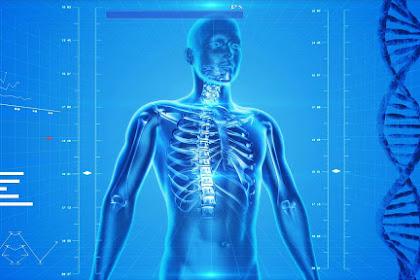 Tips Menjaga Kesehatan Agar Tubuh Tetap Fit dan Tak Gampang Sakit