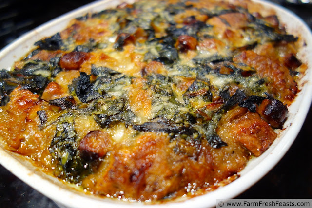 http://www.farmfreshfeasts.com/2013/03/panade-with-swiss-chard-onion-and.html