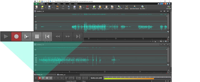 screenshot of recording in WavePad audio editing software
