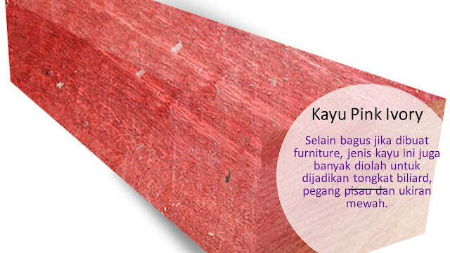 Tekstur Kayu Pink Ivory