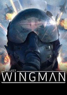 Project Wingman Thumb