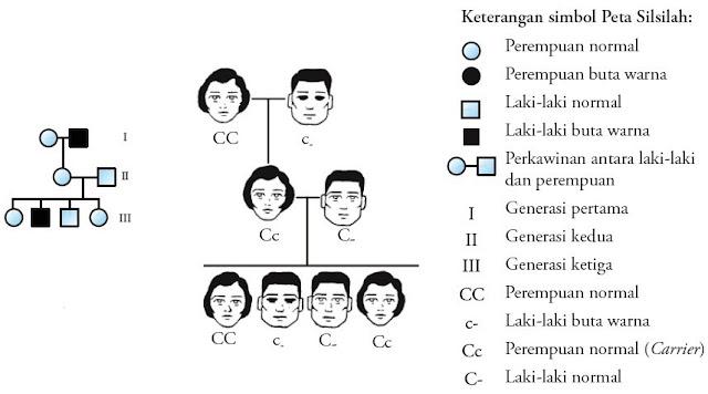 Peta silsilah penyakit buta warna dalam satu keluarga