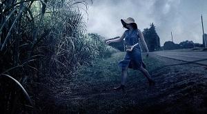 En la hierba alta 2019 HD 1080p Español Latino, In the Tall Grass 2019 HD 1080p Español Latino