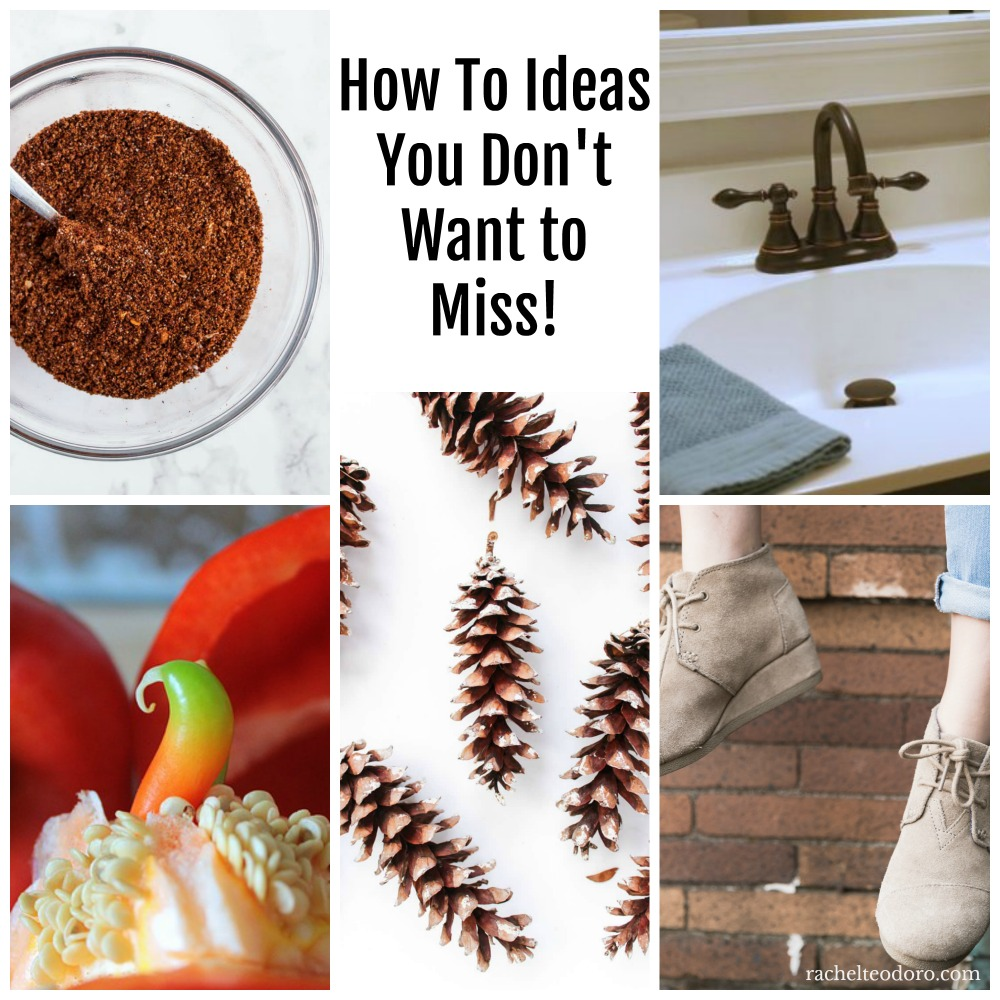 seeds, pine cones, save money, taco seasoning