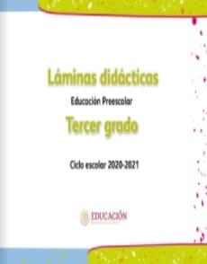 Láminas didácticas Tercer grado Preescolar 2020-2021