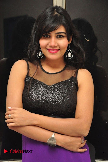 Telugu Actress Rachana Smith Stills at Money is Honey Audio Release  0007.jpg