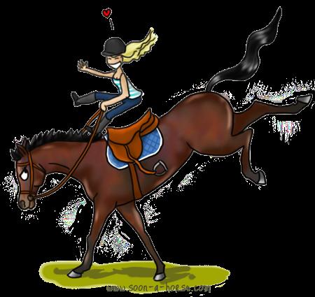 Equiandlove cheval rencontres equitation