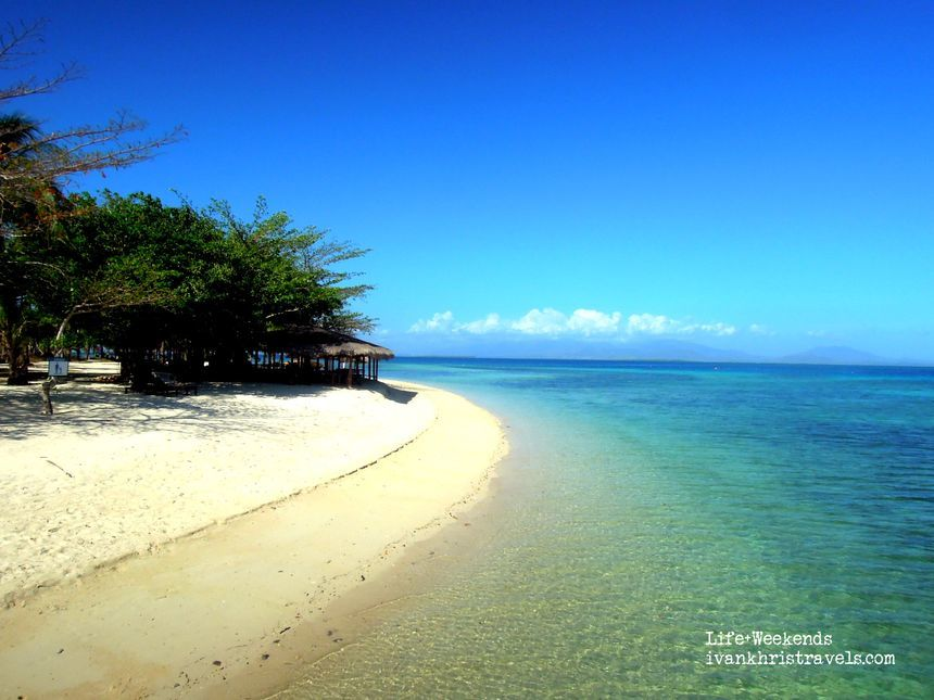 White sand beach at Dos Palmas Island Resort and Spa