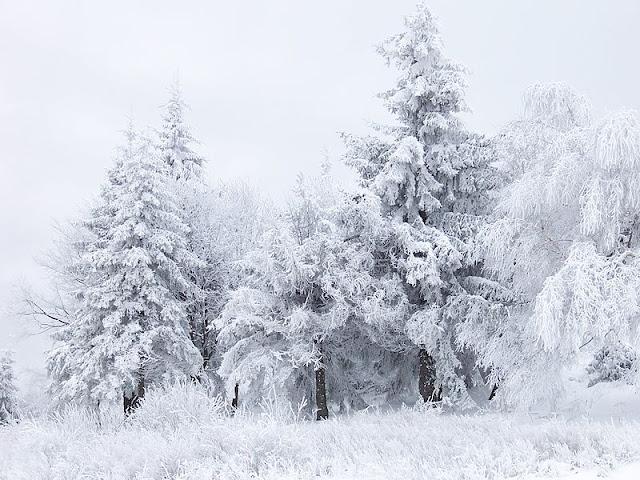 https://commons.wikimedia.org/wiki/File:Snow_Scene_at_Shipka_Pass_1.JPG