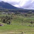 Panorama Alam Jatiluwih, Cocok Bagi yang Merindukan Udara Segar