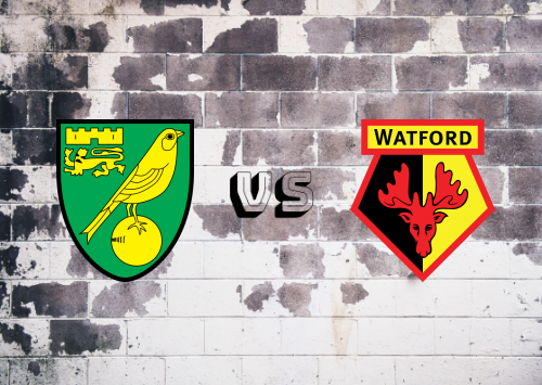 Norwich City vs Watford  Resumen