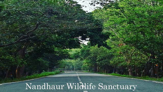 How To Reach Nandhaur Wildlife Sanctuary