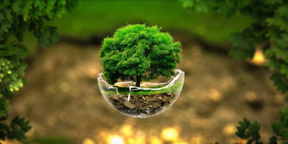 doğa çevre