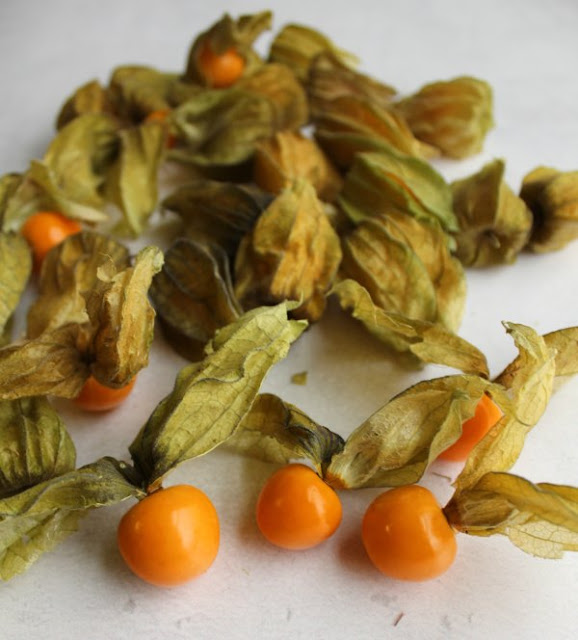 ground cherries, some in husk and a few peeled with yellow fruit showing