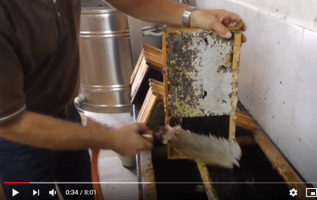 Εξαγωγή μελιού από τις κηρήθρες, ωρίμανση και εμφιάλωση