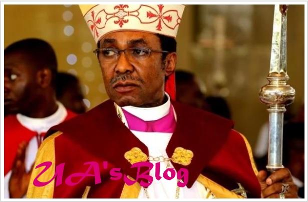 North using cattle colony to Islamise Nigeria, Igbo wont accept it – Archbishop Chukwuma