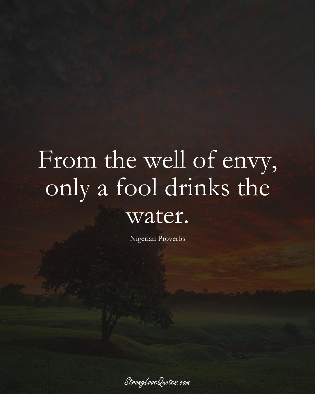 From the well of envy, only a fool drinks the water. (Nigerian Sayings);  #AfricanSayings