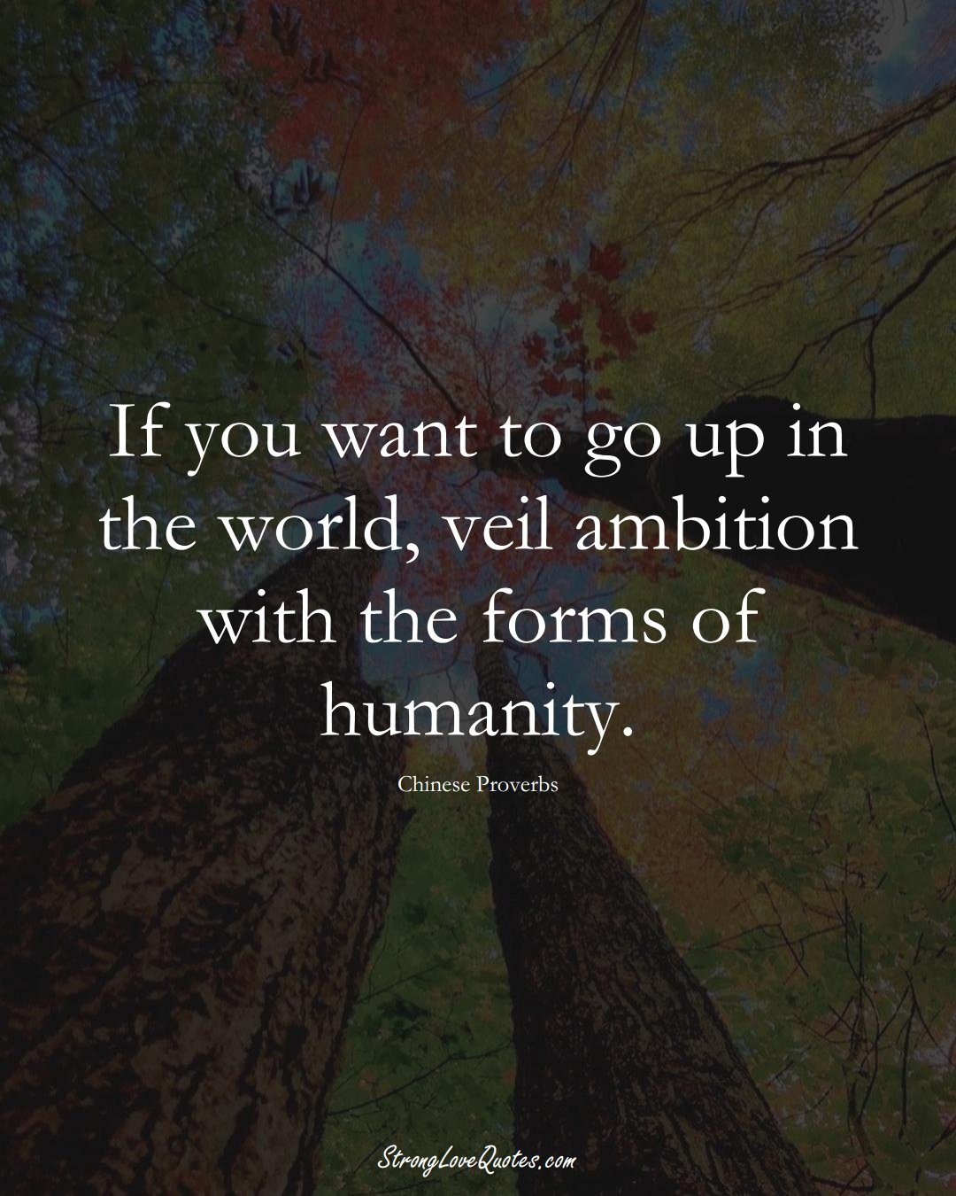 If you want to go up in the world, veil ambition with the forms of humanity. (Chinese Sayings);  #AsianSayings