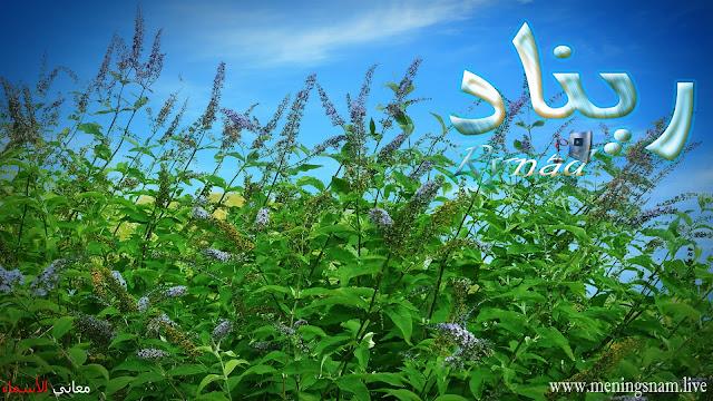 معنى اسم ريناد وصفات حاملة هذا الإسم rynad, renad, rinad,