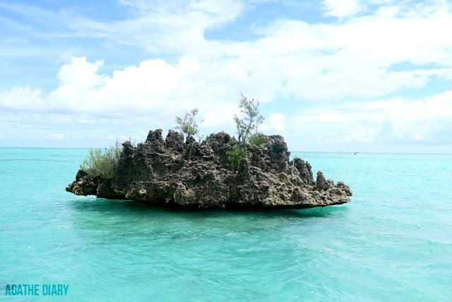 Rocher du Bénitier île Maurice Agathe Diary