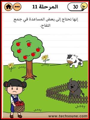 مزرعة ياسمين المرحلة 11