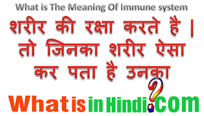 What is the meaning of Immune system in Hindi